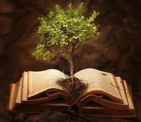 Ex_Tree